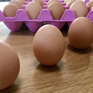 卵を買ったら必ずやること