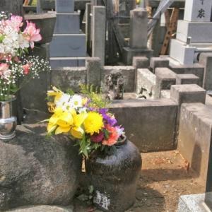 専業主婦年金夫の死後どうなる?いくらもらえるのか・生活できるのか