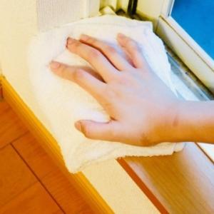 掃除のコツほこりをキレイにする方法と予防策!病気・カビ・ダニ防止