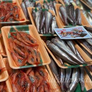 10月からどんな魚を売るか?近況報告と来月からのおすすめ魚情報