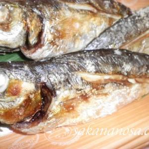 レンジでチン(電子レンジ)で調理した魚はなぜおいしくないのか?