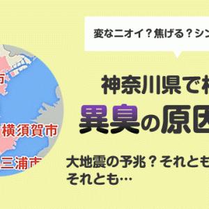 """横浜駅の異臭騒ぎの原因は?地震の""""予兆""""によるものか?"""