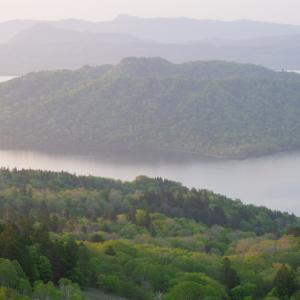 朝陽に照らされる湖畔の森!
