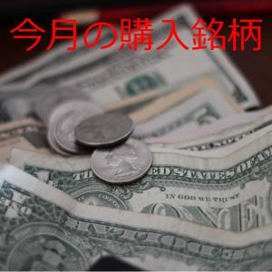 【2021年6月】今月も米国株を20万円以上購入しました。実際に購入した銘柄(おすすめ)を紹介します。