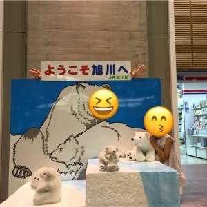 観光列車の思い出 その1(富良野・美瑛ノロッコ号)