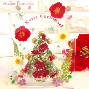 【2020クリスマスレッスン第1弾!】「ぷっくりお花のツリーのクリスマスフレーム」始まってます!