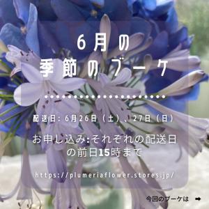 6月の季節のブーケ(紫陽花などブルーの色味でを予定) ご注文受付中!