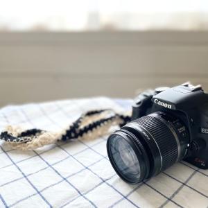 PIXTAデビューしました~素人カメラマンがストックフォトに挑戦中