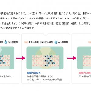 ステラファーマが取り組んでいるBNCT(ホウ素中性子補足療法)のお話を少し