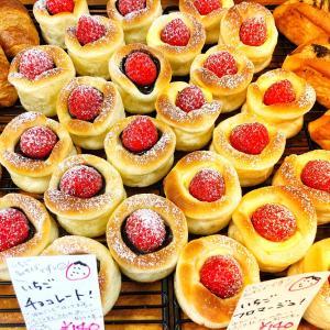 ふるさと納税おすすめ編!長野県南箕輪村「もちもちベーグルとおすすめパンのお楽しみセット」