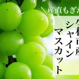 品切れ必須の特産品!宮崎県小林市 「新鮮ぶどう」が入荷しました(増量中です)