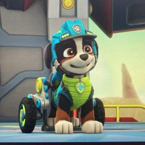 【パウパトロール】レックスは将来の新キャラなのか!?いつから?おもちゃは?犬種は?など細かく調べてみた!