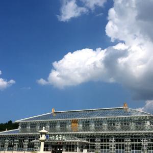 夏の慶州旅行☺︎王宮の植物園【東宮園】