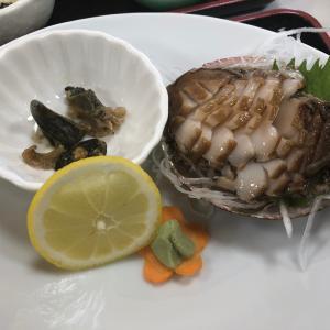 アワビが美味しかった、港。和歌山でキャンプ。