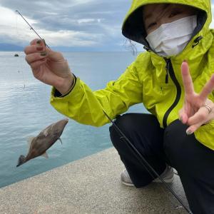 淡路島の釣果は聞かないで…