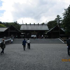 トレーダーは難しそうだ、、気分を変えて北海道神宮へ