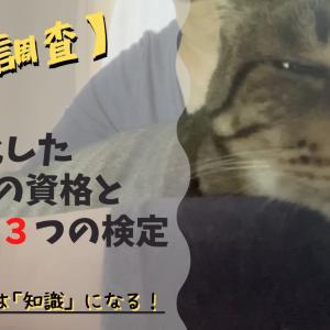 【徹底調査】猫に特化した7つの資格と3つの検定一覧|あなたの猫愛は「知識」になる!