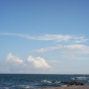 茨木の大洗サンビーチ海水浴場で男性がサメに襲われ、21針ぬう大ケガを負った