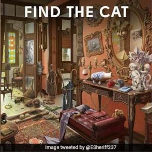 これは難しい!絵の中にいる猫、あなたは見つけることができる?
