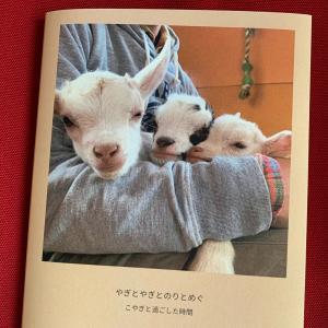 しばらくブログおやすみしまーす♡