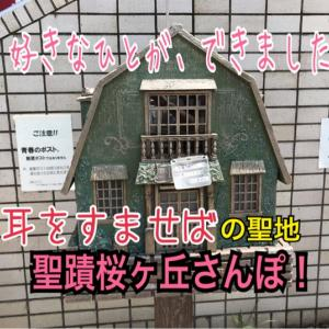 【多摩駅めぐり】聖蹟桜ヶ丘駅(京王線)<118/160>