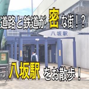 【多摩駅めぐり#128】八坂駅(西武多摩湖線)