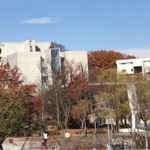 多摩コラムvol.108 多摩の大学を研究しよう!