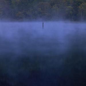【オカルト】七人心中の池