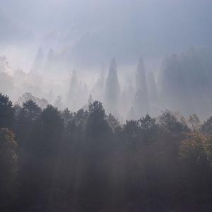 【不思議】山に存在する神々