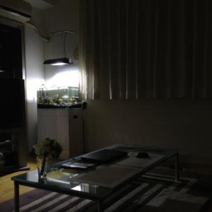 【東京】幽霊と楽しく過ごした日々