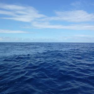 【守護霊】海で死を覚悟した時に起きた奇跡