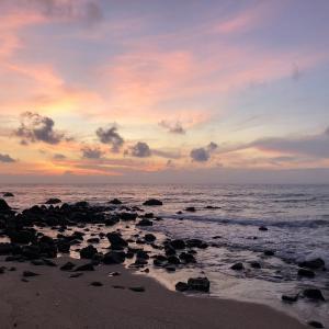 タイ 🇹🇭 サムイ島   基本情報まとめ