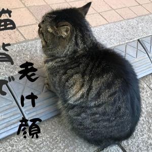 猫背とほうれい線の深〜い関係!わるい姿勢で老け顔に!
