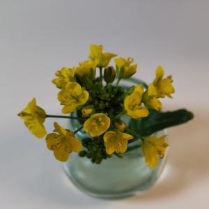 オータムポエムの花