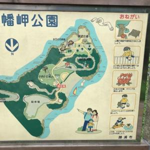 八幡岬公園【晴れてなくても楽しめる、曇りの日はこんな感じ】