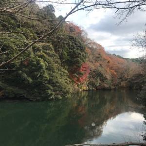 散在ガ池(さんざがいけ)森林公園 from 鎌倉|【駐車場は人の家!?】
