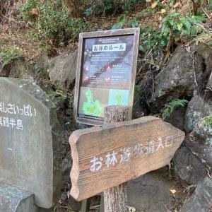神奈川県の真鶴半島自然公園レポート【海に森に】