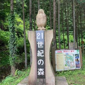 県立21世紀の森【神奈川県】レビュー
