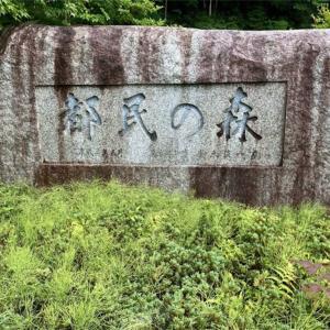 東京都檜原都民の森レビュー【ふかふかのウッドチップを体感せよ!】