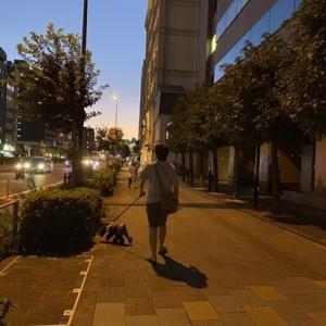 【錦糸町】TERZO3で美味しい夕飯&ロング散歩