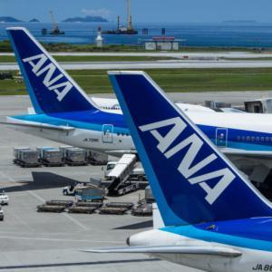 【ANA】2022年度プレミアムメンバーステイタス獲得チャレンジ詳細発表されました【陸マイラーでも上級会員の近道】