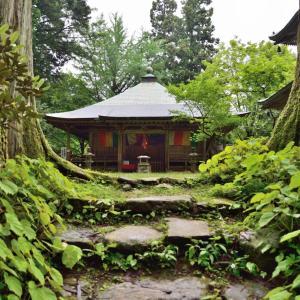 岩湧寺の見所、秋海棠(シュウカイドウ)と長寿水や駐車場を紹介。