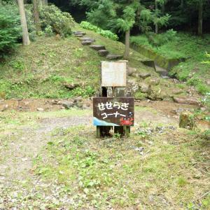 岩湧の森「せせらぎコーナー」で川遊び。アクセスや駐車場等を紹介。