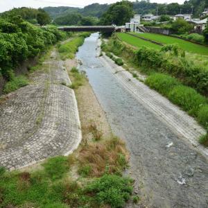 くろまろの郷で川遊び。アクセスや川遊びのポイントを紹介。