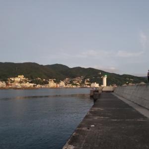 200830伊東港