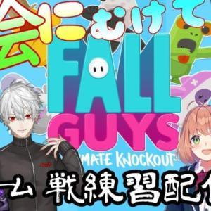 【Fall Guys】大会にむけててーむ練習だッ!!【鈴原るる/にじさんじ】