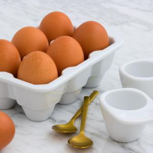 タンパク質が多い食べ物ランキングTOP10【食生活アドバイザーが解説】