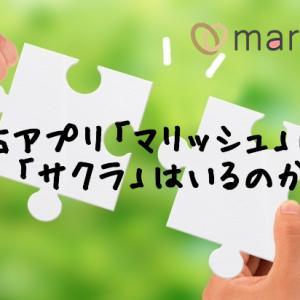 【調査】婚活アプリ「マリッシュ」にサクラはいるの?いないの?