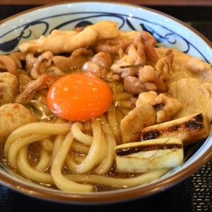 岡山市中区東川原の鶏すきうどん(丸亀製麺 岡山東川原店)