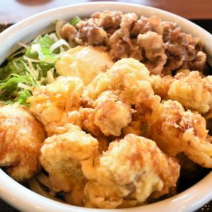 丸亀製麵の牛肉タル鶏天ぶっかけ
